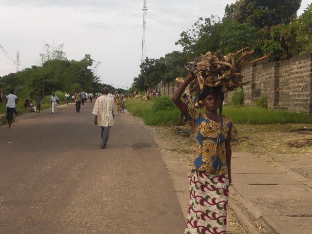 Señora transportando la leña recogida en el bosque (Kimwenza)