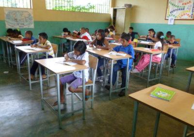 Alumnos en el proyecto de verano